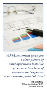 How the Profit & Loss Statement works and how to use it