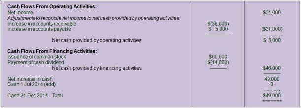 5 Net Cashflow Stmt(1)